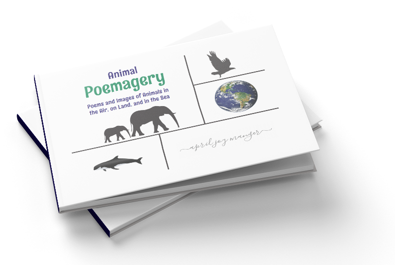 Animal Poemagery - Poems and Images of Animals in the Air, on Land, and in the Sea - April Joy Manger